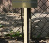 Veszprémi Járásbíróság tábla